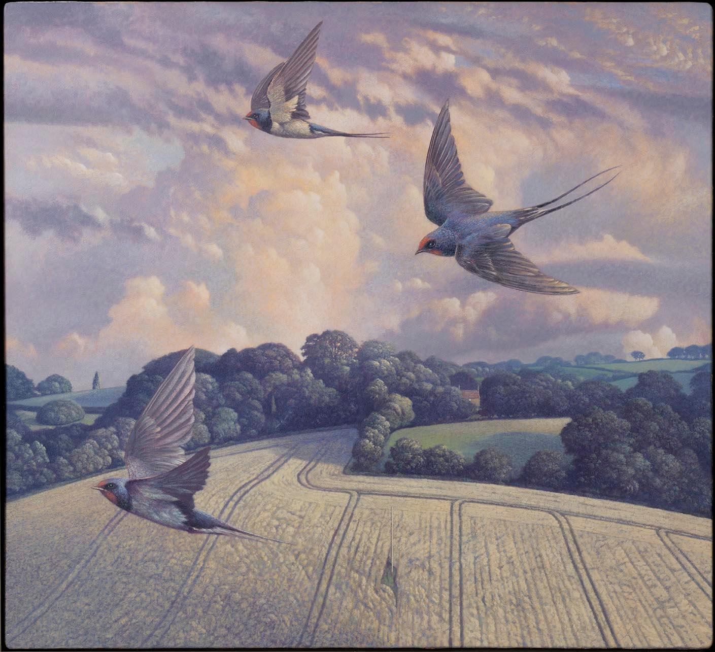 Swallows Dancing Hill