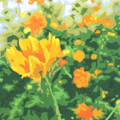 Wildflower Composition (California Poppy#12)