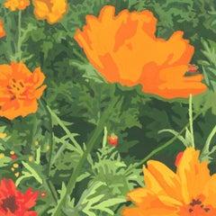 Wildflower Composition (California Poppy#14)