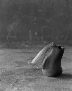 Very Tiny Folder over Wildflower in Black Teardrop Sculpey