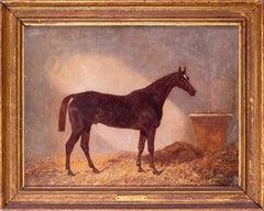 British 19th Century equestrian oil painting of Comus, racehorse winner