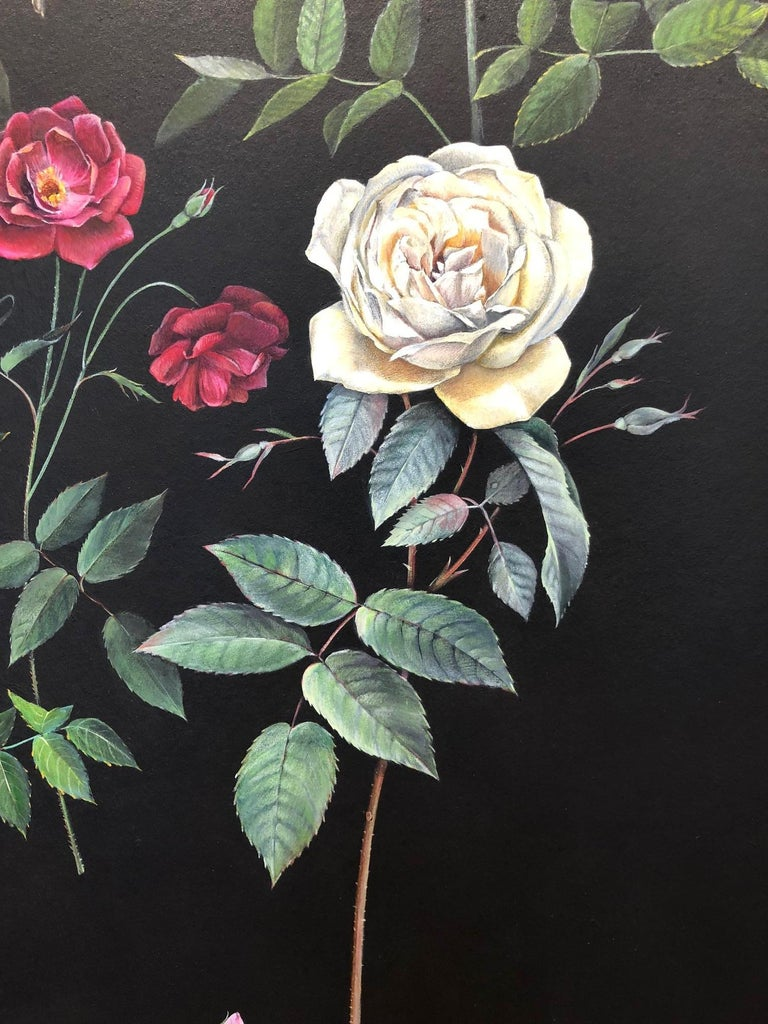 Man Made: Evolution of Roses, from one of our nation's most in demand conservation / preservation artists, Jane Kim, who inspires us to love and care for the Earth one work of art at a time. In most cases, the roses we grow in our gardens and give