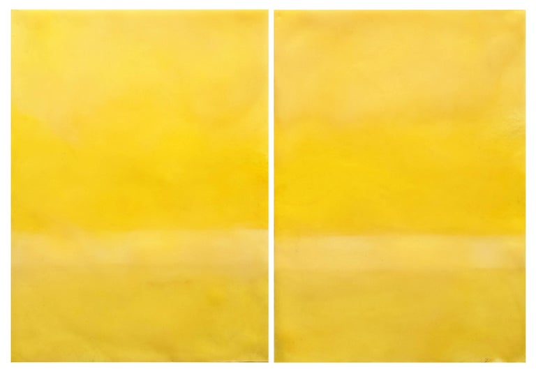"""Beeswax, resin and pigment on archival paper mounted on archival board matted. Unframed. Image size: 20 cm x 31 cm, 7.75"""" x 12"""" mounted on archival board 41 cm x 61 cm, 16"""" x 20"""" matted.  This work is from a series of works on paper exhibited in the"""