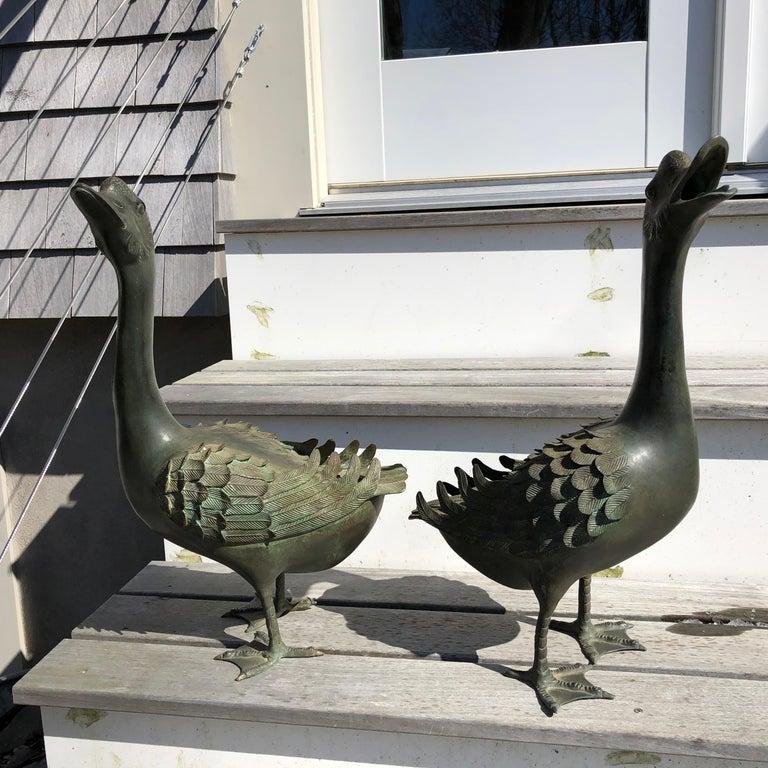 20th Century Japan Antique Large Hand Cast Pair Bronze Garden Ducks, Beautiful Details For Sale
