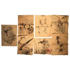Japanese Antique Set 60 Hand Paintings Birds, Turtle, and Dragonfly and Album