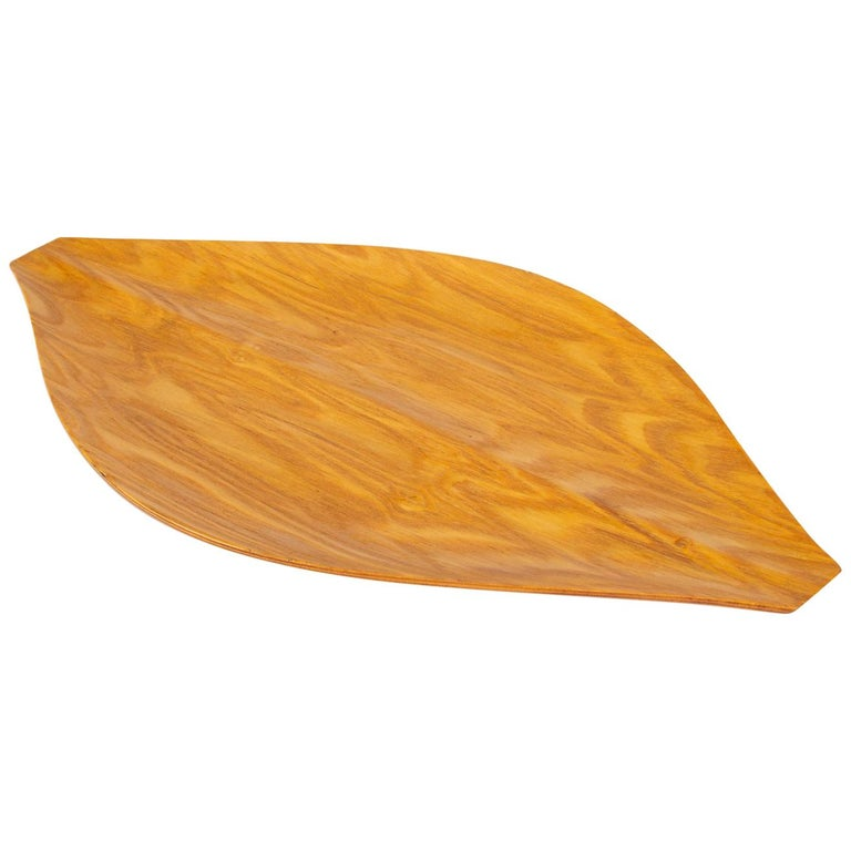 Japanese Bent Plywood Tray For Sale