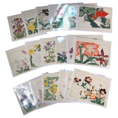 Japanese Collection 18 Old Woodblock Flower Prints Vibrant Colors, Frameable