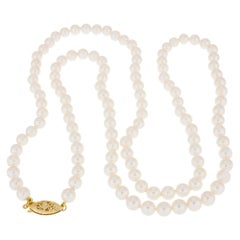 Japanese Cultured Pearl Yellow Gold Necklace
