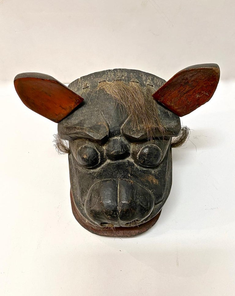 This another superb example of an Edo Period early 18th century or earlier Lion Mask created for the Lion Dances of the Gion Matsuri Festival. The mask is in overall good condition for its age and use. One ear is a replacement; the other ear is old,