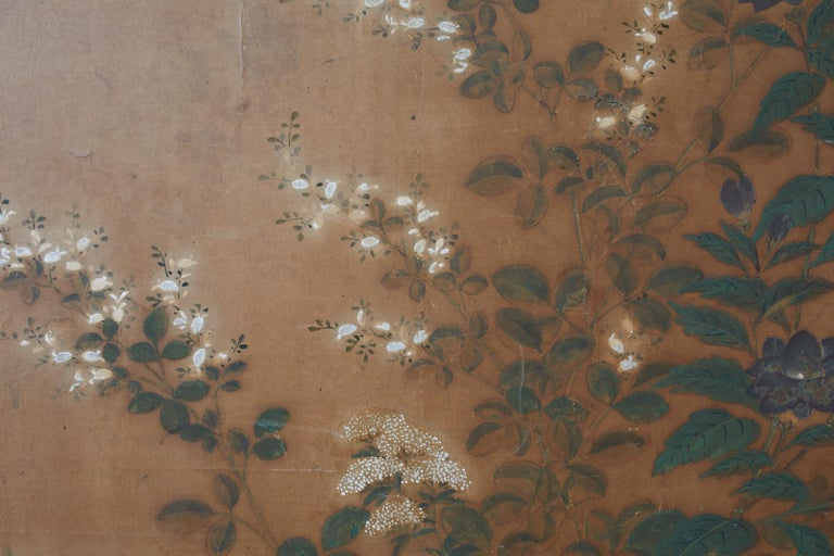 Japanese Edo Two-Panel Screen Flowers of Autumn For Sale 6