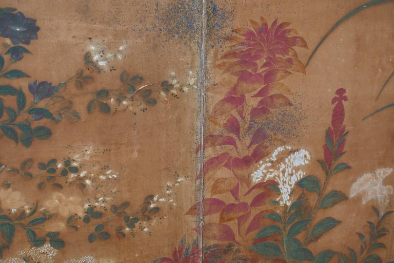 Japanese Edo Two-Panel Screen Flowers of Autumn For Sale 7