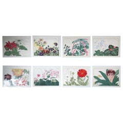 Japanese Eight Old Woodblock Flower Prints, Superb Colors, Immed Frameable #2
