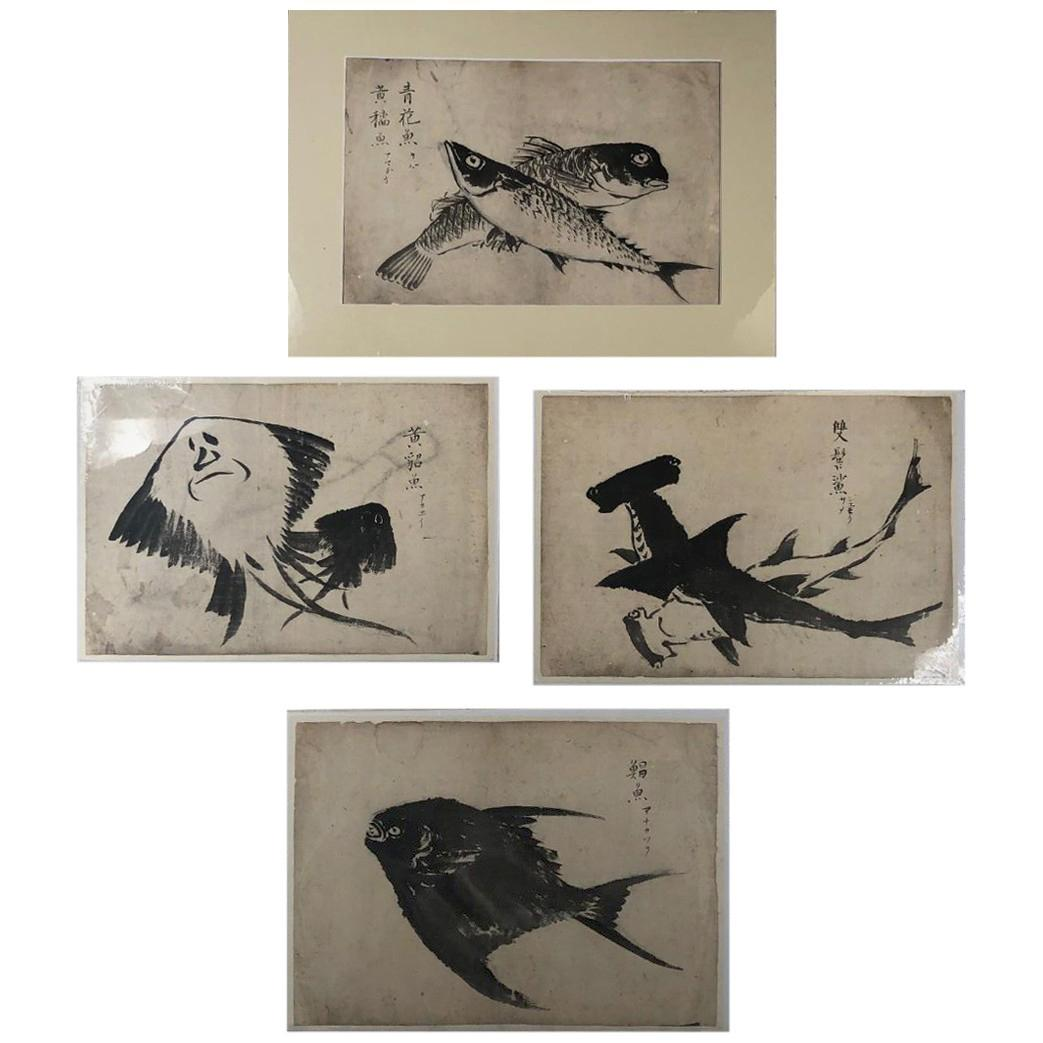 """Japanese Four Antique """"Fish"""" Hand Painted Sumi Ink Original Drawings, Frameable"""