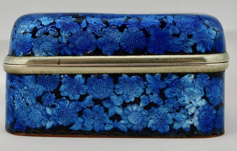 19th Century Japanese Meiji Ginbari Cloisonne Finely Decorated Floral Box For Sale