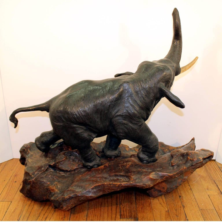 A Japanese Meiji period bronze elephant sculpture on its original burl-wood base. Old repair to the tail; some paint chips to bronze trunk; unsigned.