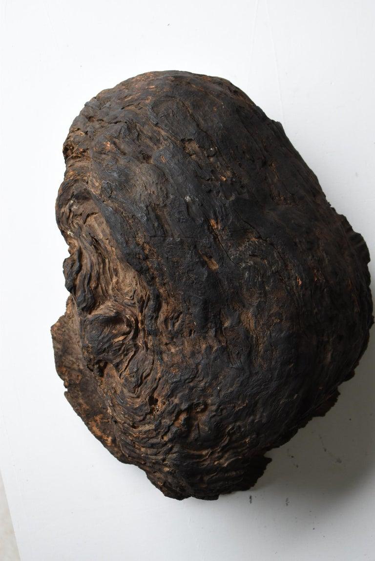 Japanese Old Tree Bump/Antique Object Figurine Wood Sculpture Wabisabi Art For Sale 1