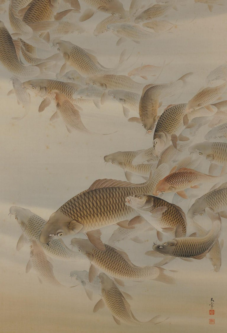 Taisho Japanese Scroll Painting, 'Group of Carp', Colour on Silk, Early 20th Century For Sale