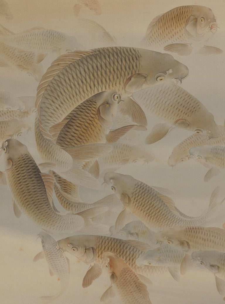 Japanese Scroll Painting, 'Group of Carp', Colour on Silk, Early 20th Century In Good Condition For Sale In Kyoto, JP