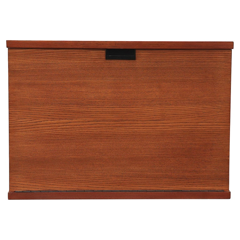 Japanese Series Teak Wall Mount Cabinet for Pastoe For Sale