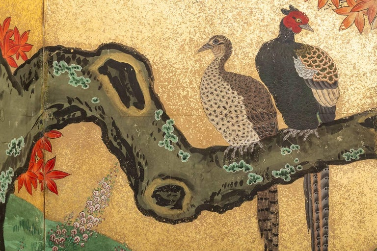 Japanese Six Panel Screen: Pheasants In an Autumn Landscape, Kano school painting with colorful and intricate details, as well as interesting interactions between the pheasants.  A brilliant Autumn colored maple tree extends across the whole