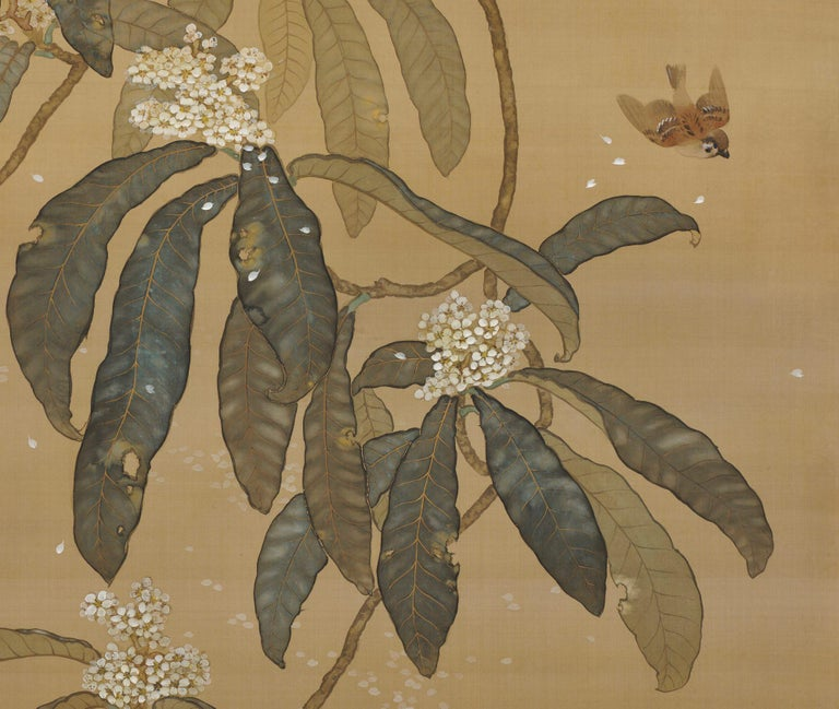 """Saegusa Soko (1886-1947) Loquat and Sparrows Early Taisho period, circa 1910-1915 Hanging scroll painting. Mineral pigments, ink and gofun on silk Signed: Soko  Sealed: Soko Dimensions: Scroll: H. 221 cm x W. 103 cm (87"""" x 40.5"""") Image: H. 182 cm x"""