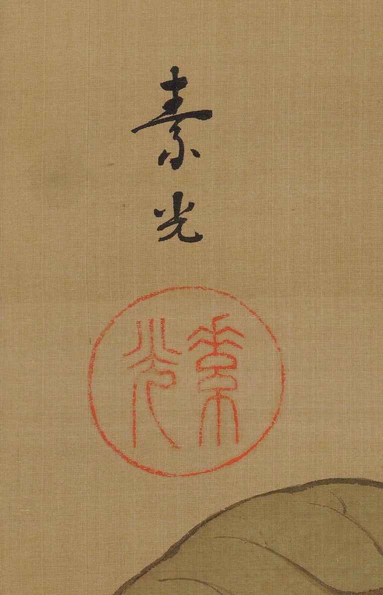 Japanese Painting, Hanging Scroll, Loquat and Sparrows, circa 1910-1915 Taisho  In Good Condition For Sale In Kyoto, JP
