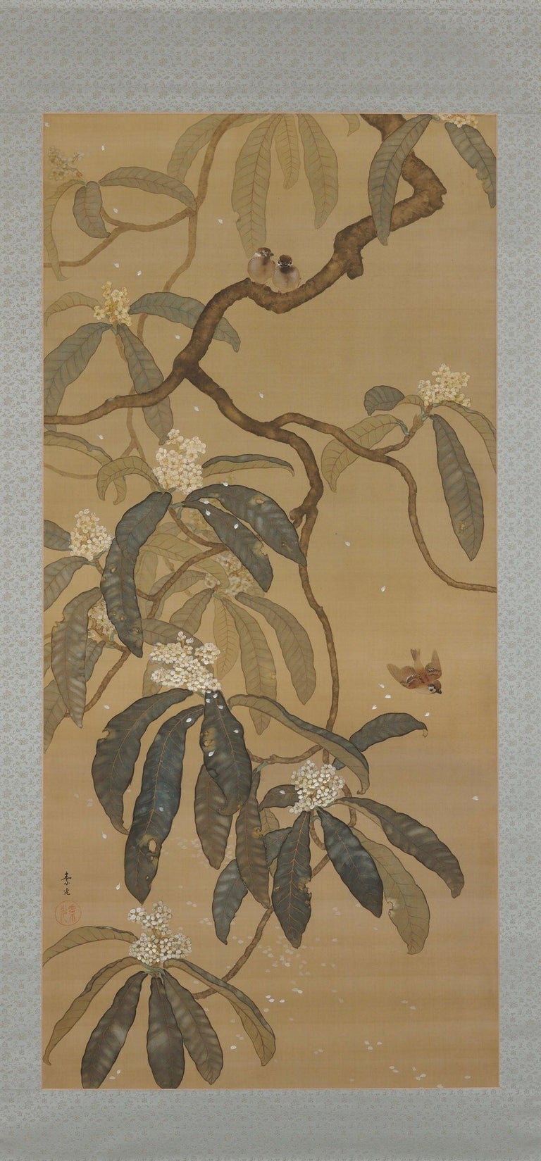 Early 20th Century Japanese Painting, Hanging Scroll, Loquat and Sparrows, circa 1910-1915 Taisho  For Sale