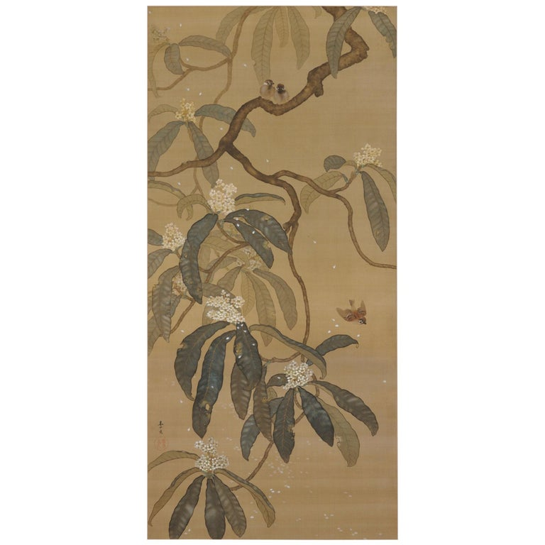 Japanese Painting, Hanging Scroll, Loquat and Sparrows, circa 1910-1915 Taisho  For Sale