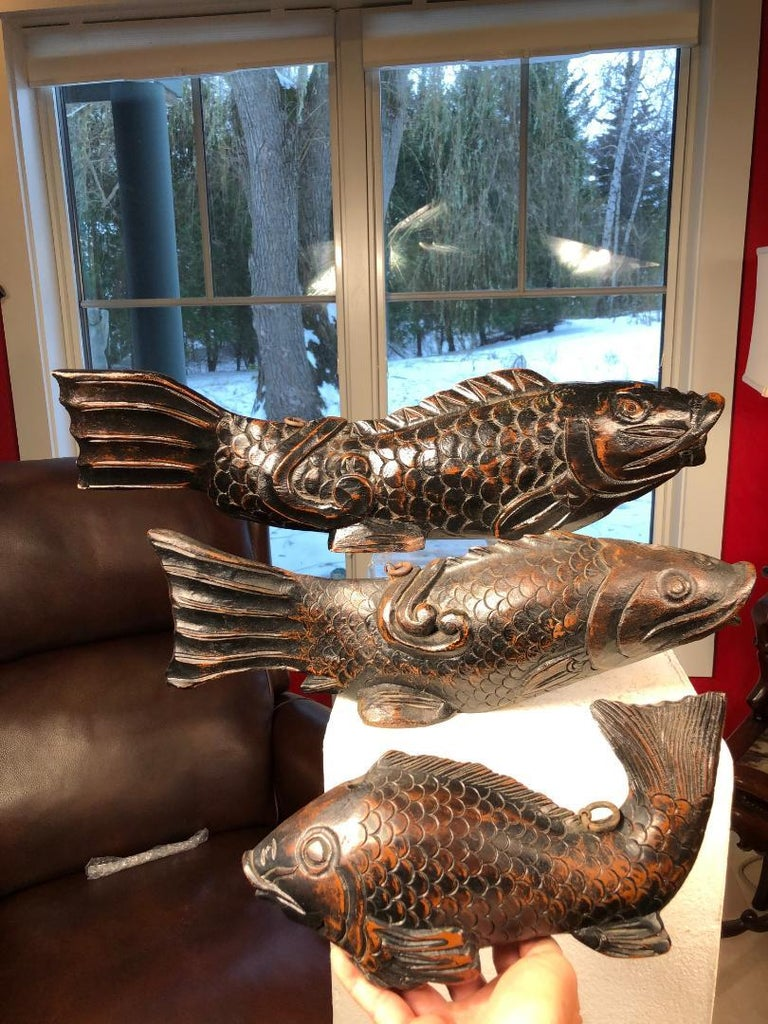 From our recent Japanese Acquisitions Travels- a big catch.