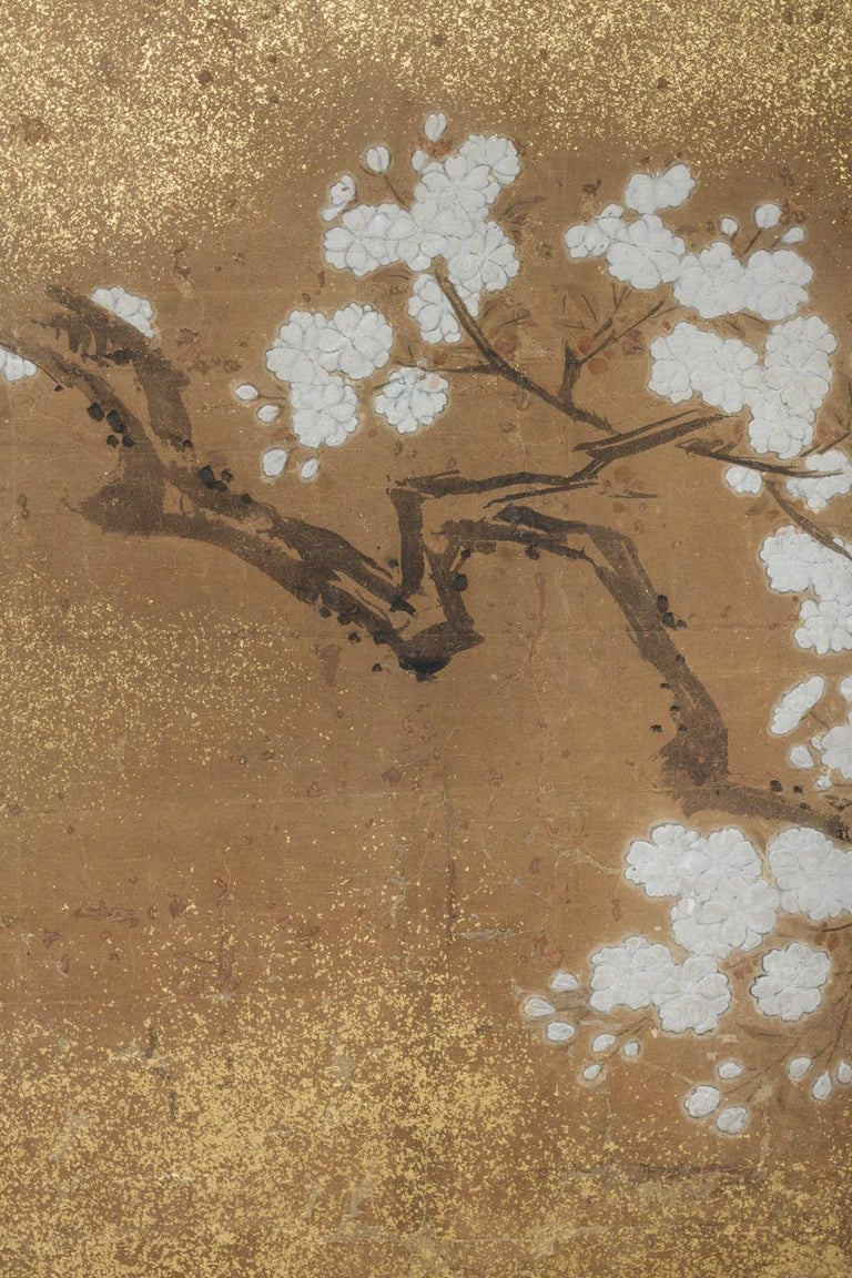 Edo Japanese Two-Panel Screen Peony and Cherry For Sale