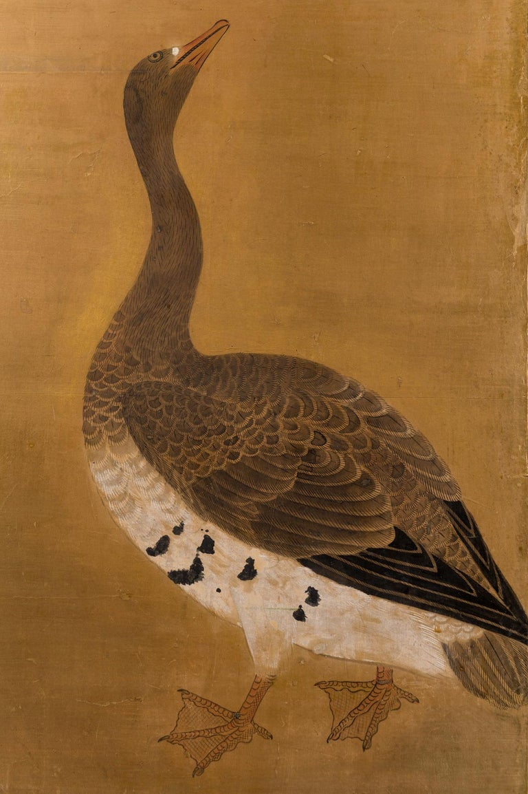 Japanese two panel screen: Geese on Gold, Edo period (circa 1800) painting of a pair of geese with wonderfully detailed feathers on a soft gold ground. Painted in mineral pigments on paper with a silver leaf border, black lacquer frame, and very