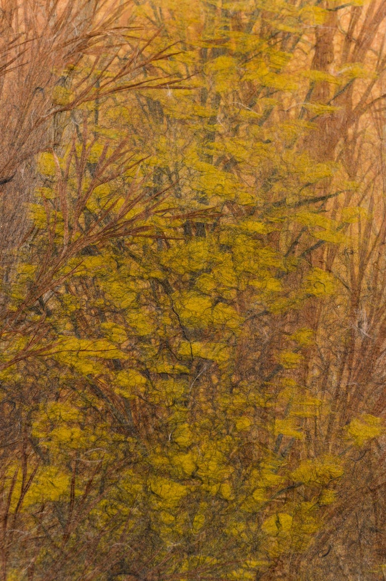 20th Century Japanese Two Panel Screen Late Autumn Forest, Rare Obara Paper Art Screen For Sale