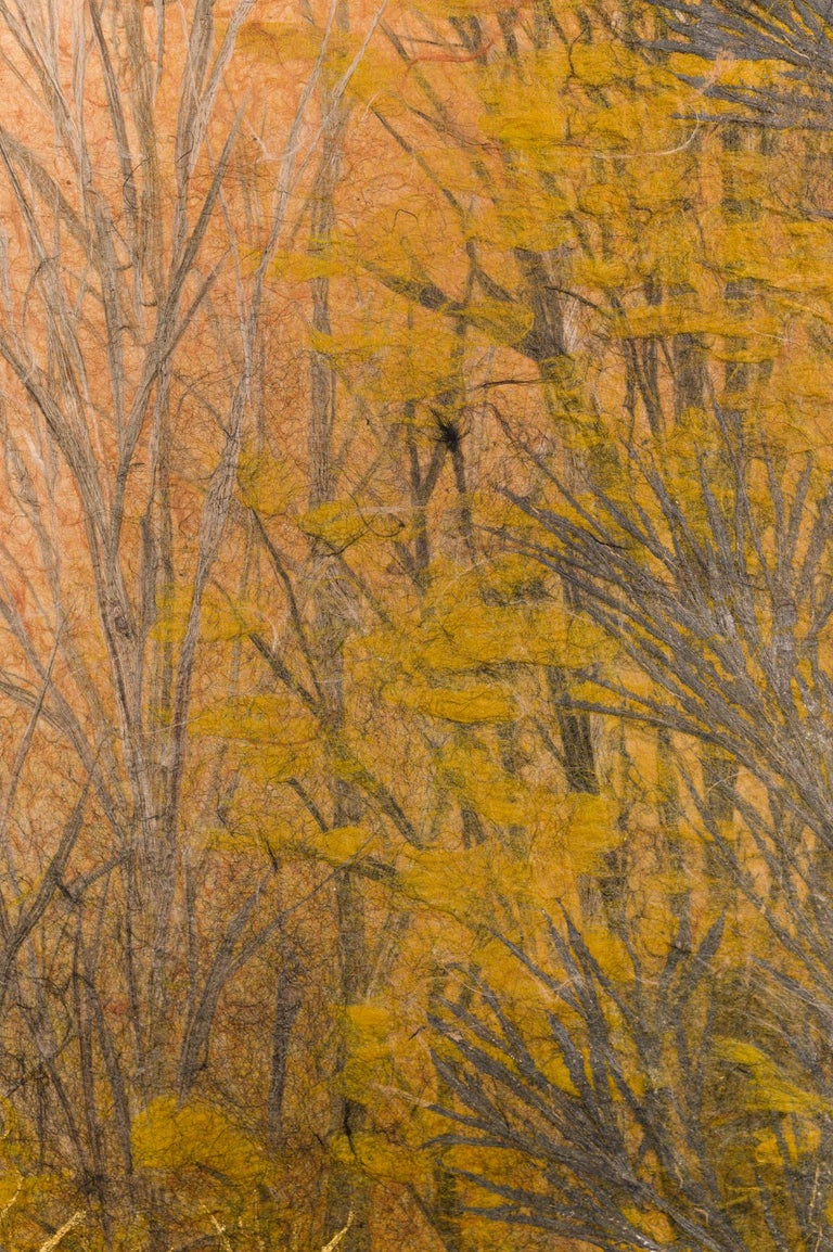 Japanese Two Panel Screen Late Autumn Forest, Rare Obara Paper Art Screen For Sale 3