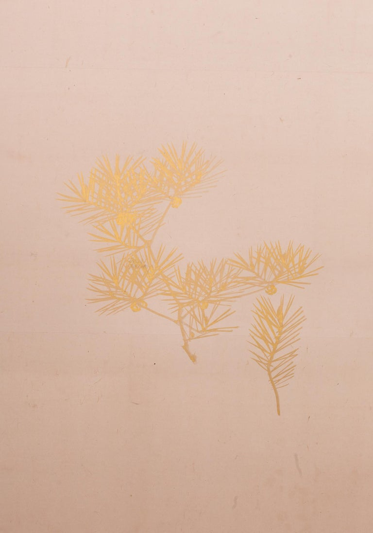 Late Edo period (circa 1850) painting of young pine in snowy landscape. Subtle and elegant painting in gold on buff-colored mulberry paper with a gold border. Signature and seal read Seiki Yokohama (1792 - 1864). Yokohama was from Kyoto, was part of