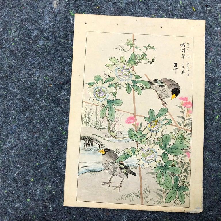 Meiji Japanese Unique