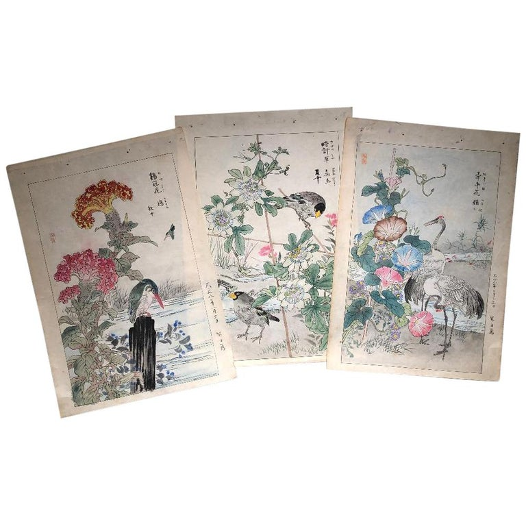 "Japanese Unique ""Birds & Flowers"" Hand Paintings Set Three Kono Bairei 1899"