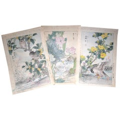 "Japanese Unique ""Owls & Flowers"" Hand Paintings Set of Three Kono Bairei 1899"