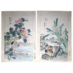 Japanese Vibrant 'Wood Ducks and Flowers' Woodblocks Set Two Kono Bairei, 1899