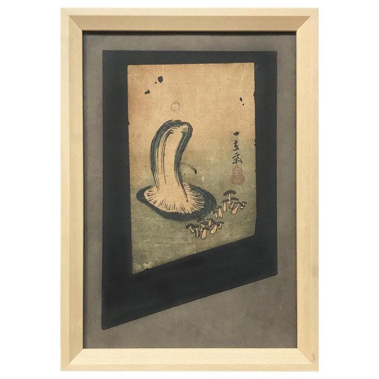 Japanese Woodblock Print of Mushroom Study, Fragment For Sale