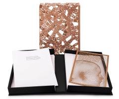 Plensa/Estellés: L'Hotel París - 21st Century, Contemporary Art, Book, Copper