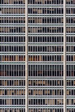 1001 Windows