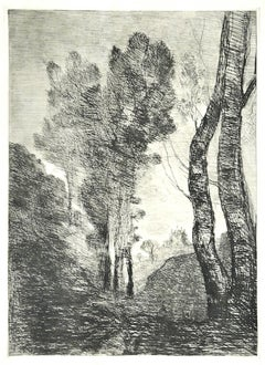 Trees - Original Etching - Late 19th Century