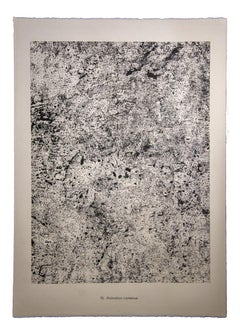 Animation Contenue - Original Lithograph by Jean Dubuffet - 1959