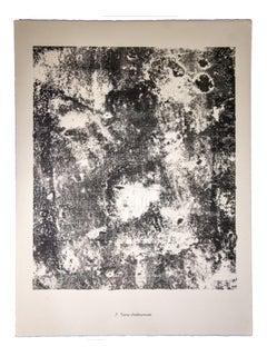 Terre Chaleureuse - Original Lithograph by Jean Dubuffet - 1959
