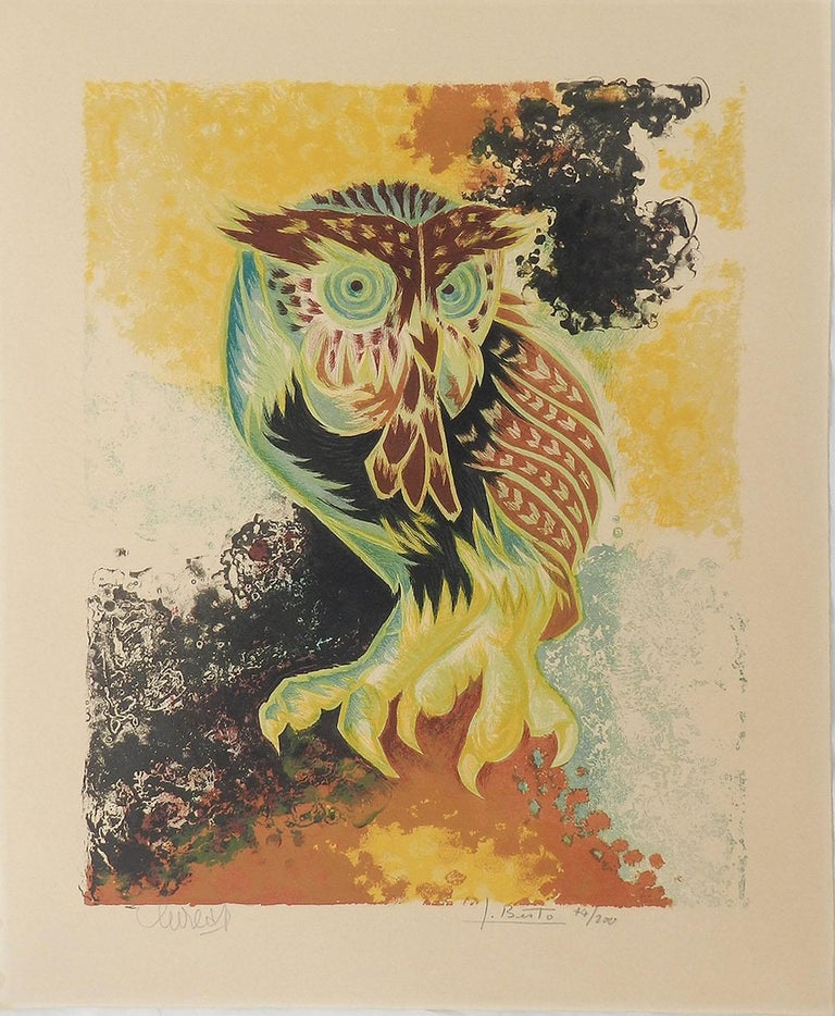 Jean Lurcat Lithograph Owl Limited Edition Hand Signed c1950-1960 unframed  For Sale 2