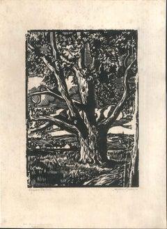 Le Gros Arbre - Original Woodcut by J. Morin - 1922