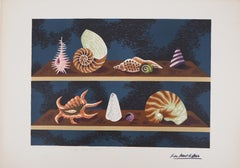 Shells - Original handsigned lithograph/ 100ex
