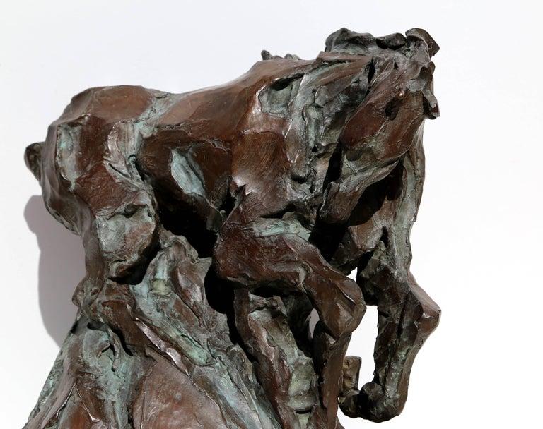 Genesis, Bronze Horse Sculpture by Jean Richardson For Sale 1