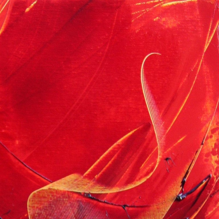 Black on Red Abstract Oil Painting 14