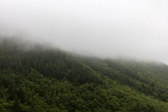 Mountain Pass in Fog, Oregon